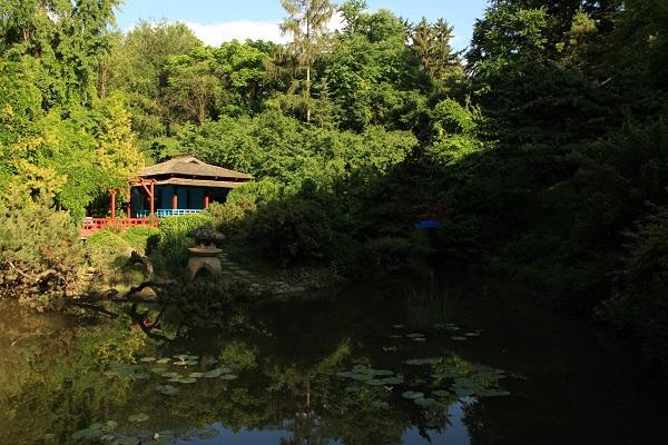 Obiective turistice Cluj-Napoca: Gradina Botanica