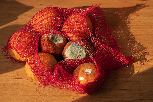 Risipa alimentară - fructe stricate