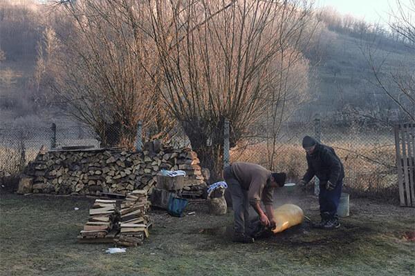 Tăiere porc de Ignat pentru un meniu de Crăciun complet în Săcuieu.